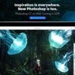 Adobe Previews Desktop-Class Photoshop CC para iPad, lanzamiento en 2019