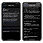 7 Nuevos iOS 13 Tweaks: MeltedCrayons, RoundedDock, ConfirmRotate y más